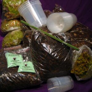Stort omplanteringspaket med krukor, bark, näring, vitmossa, etc
