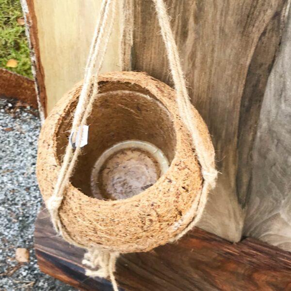 Ampel av kokosfiber, för 15 cm bred kruka