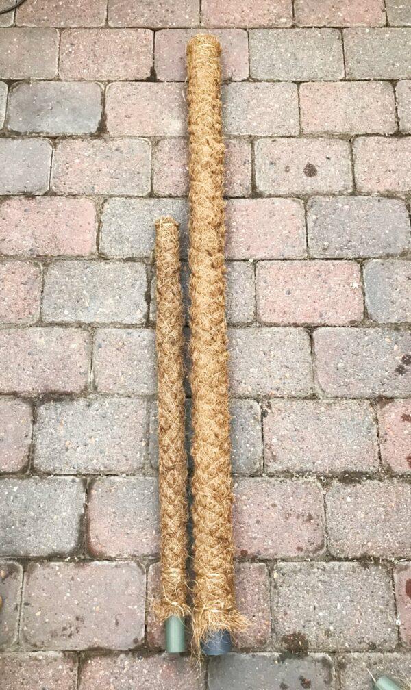 Två mosstockar på golv, den ena 80 cm hög den andra 120 cm hög