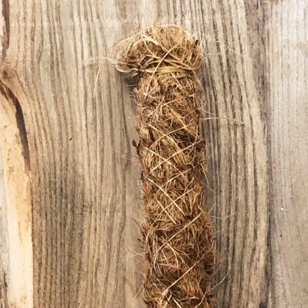 Mosstock, 80 cm hög